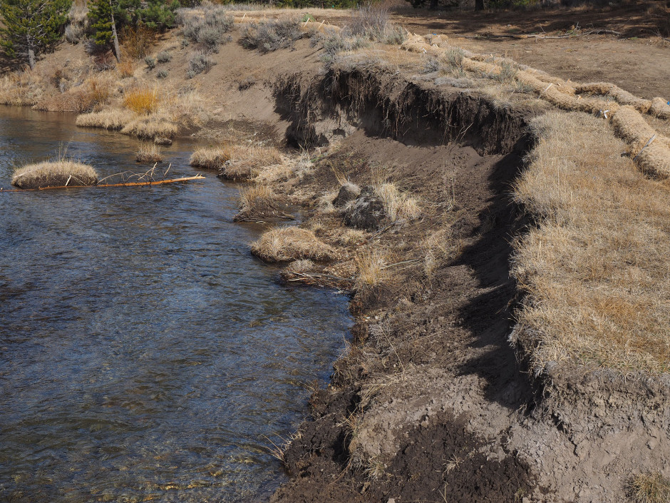 9 - Bank erosion along existing channel fall 2014.