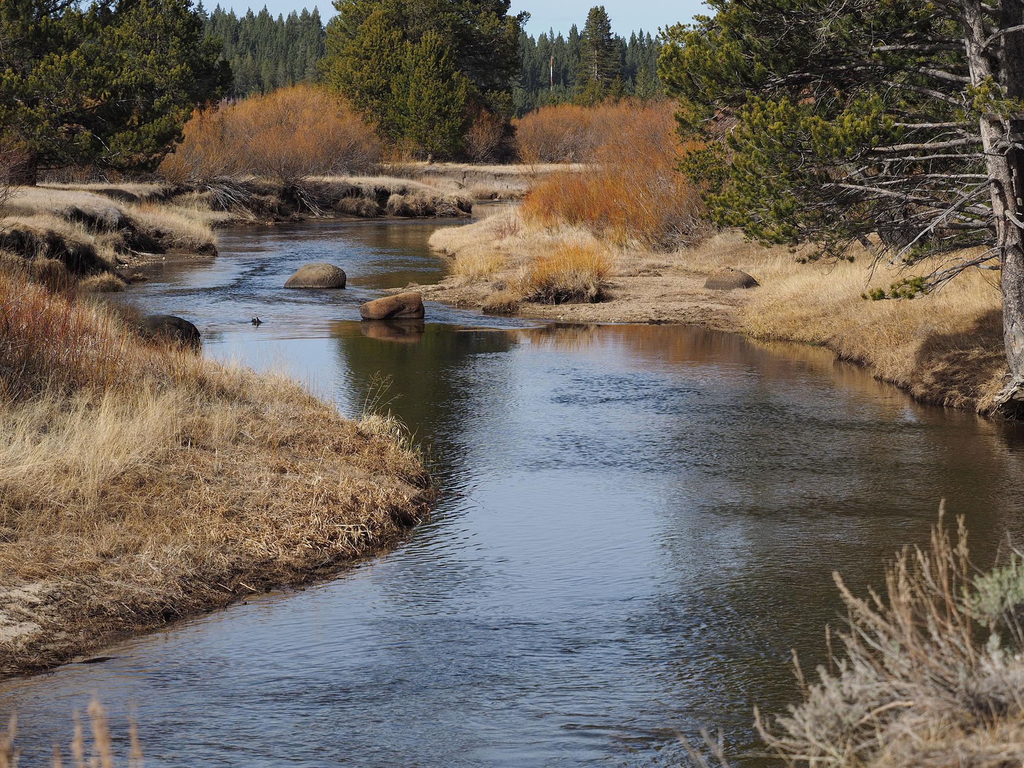 Wildscape: Upper Truckee River Restoration, Lake Tahoe ...