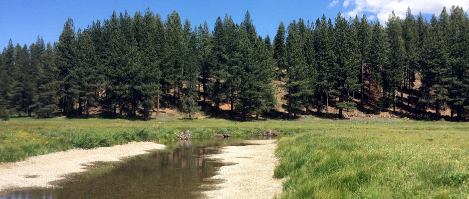 Upper Truckee River Restoration <br/>South Lake Tahoe, CA